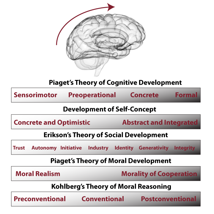developmental theories piaget erikson and bandura The main difference between piaget and vygotsky is that piaget believed that children go through set stages of cognitive development, and vygotsky believed that cognitive development is continual.